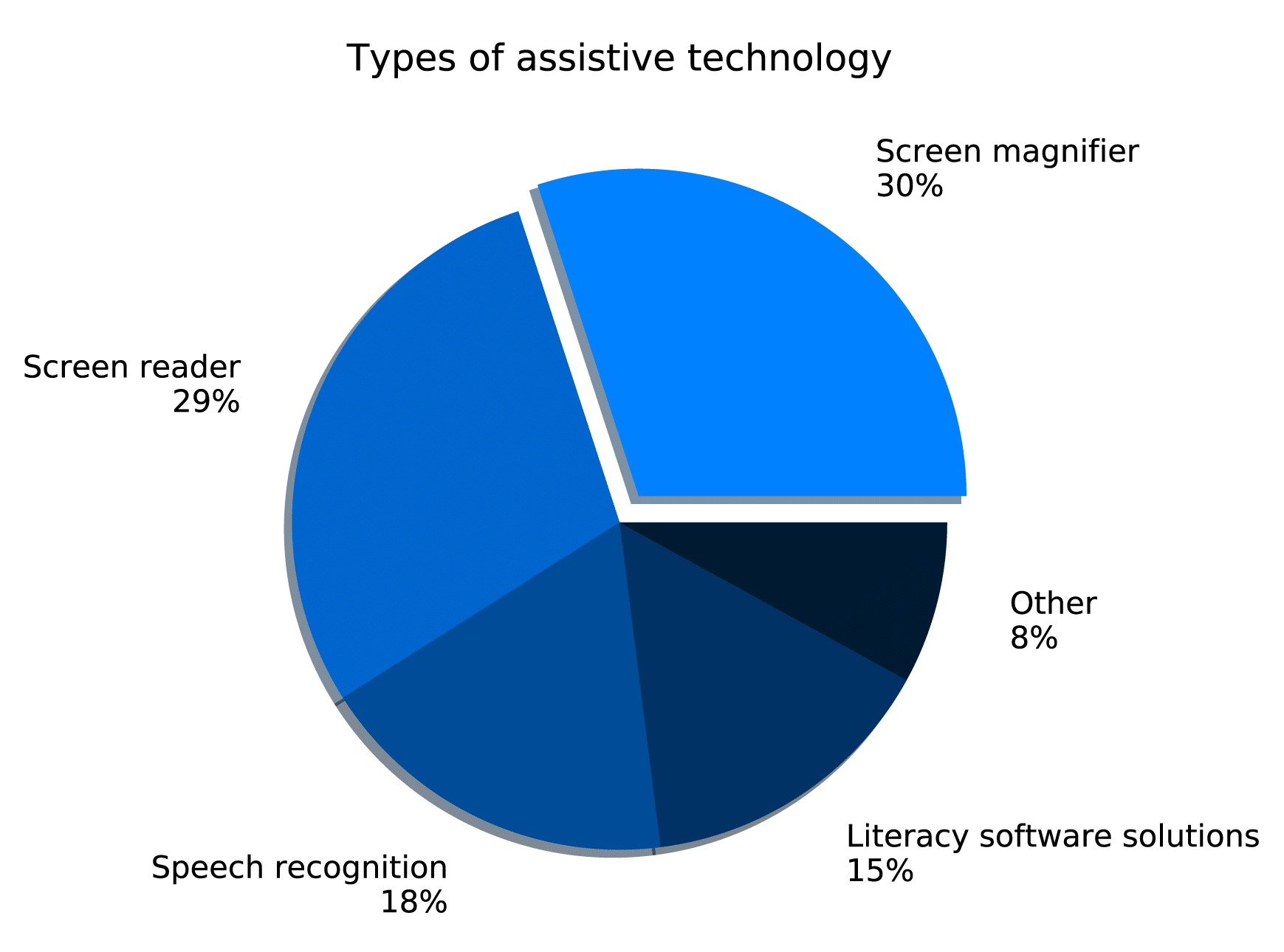 Pie chart showing: screen magnifier 30%, screen reader 29%, speech recognition 18%, literacy software solutions 15%, and other 8%.