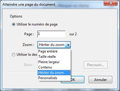 Capture d'écran d'Acrobat, boîte de dialogue « Atteindre une vue de page » avec la liste déroulante Attributs de zoom affichée