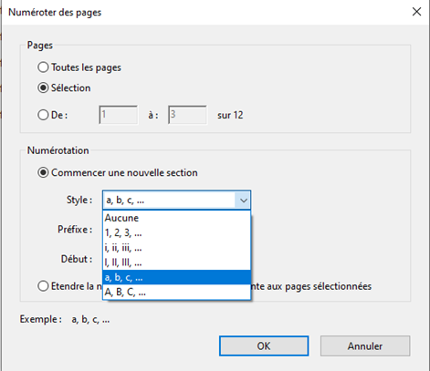 Boîte de dialogue Numéroter des pages avec « a, b, c, … » sélectionné
