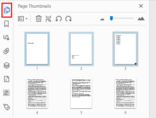 The unedited Acrobat Page Thumbnails panel