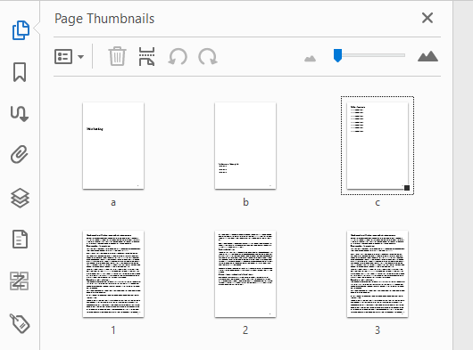The corrected Acrobat Page Thumbnails panel